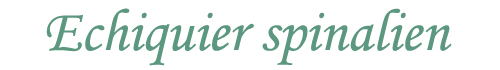 logo site epinal